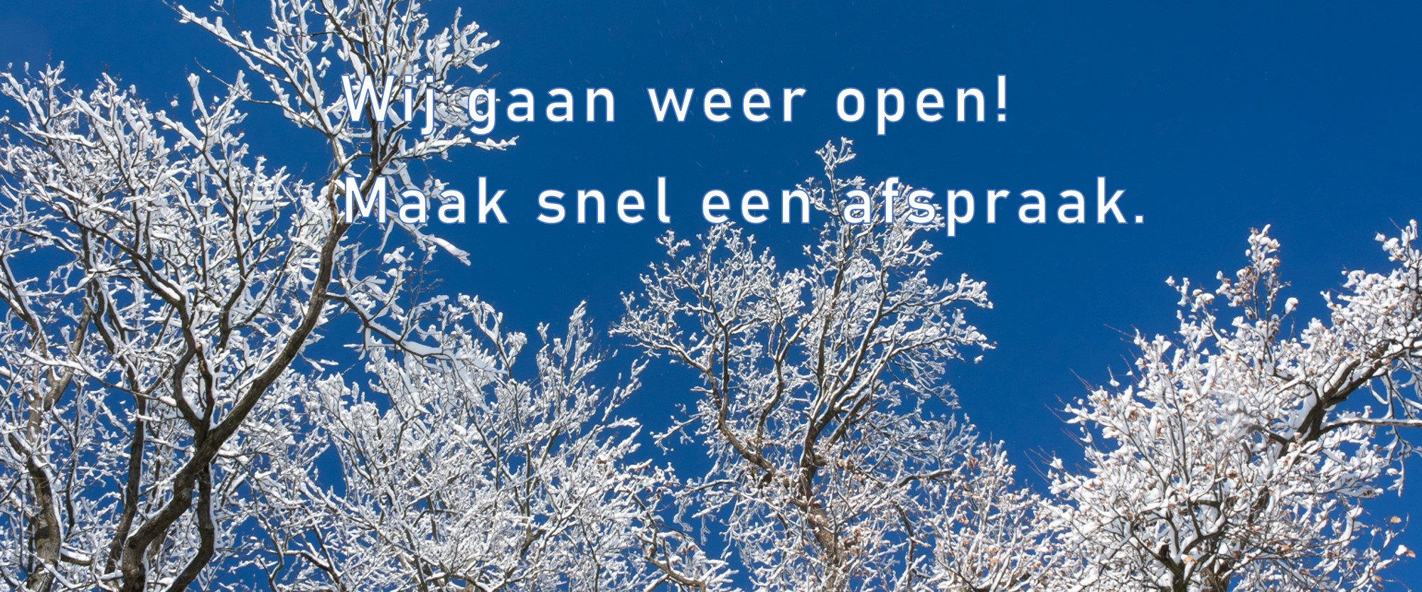 S_Winter_1327539_83173807_2_txt